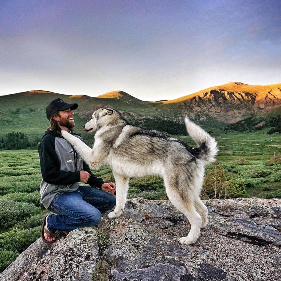 dog-nature-photography-loki-wolfdog-kelly-lund-1