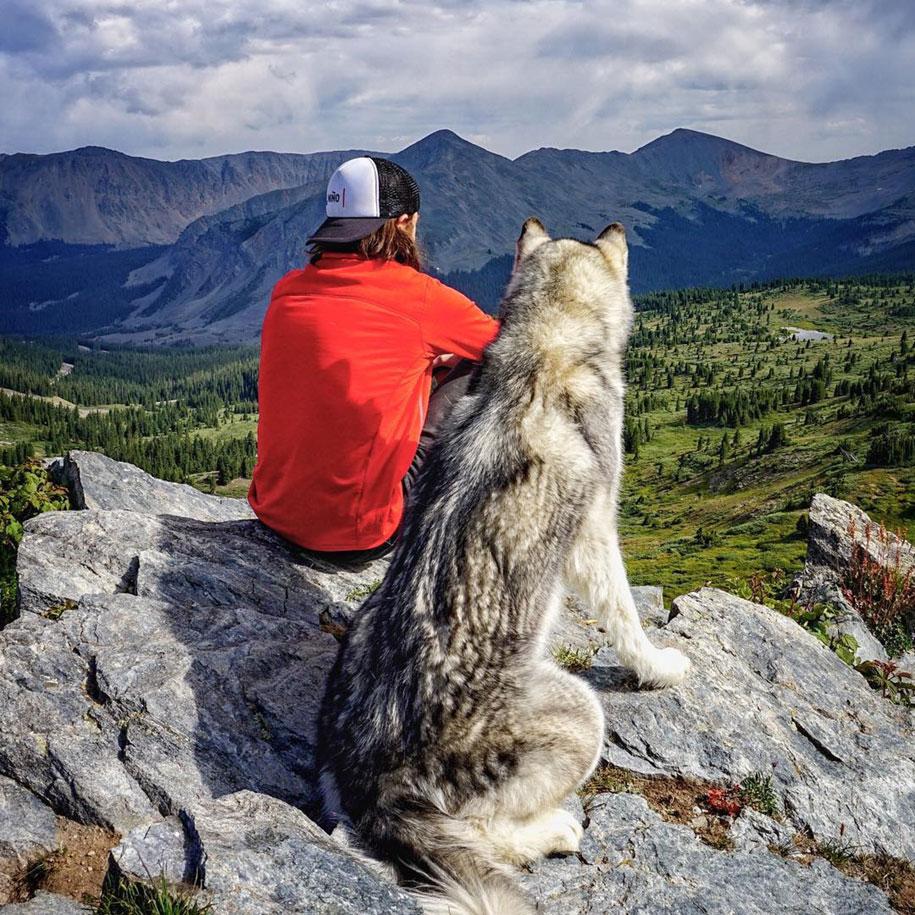 dog-nature-photography-loki-wolfdog-kelly-lund-20