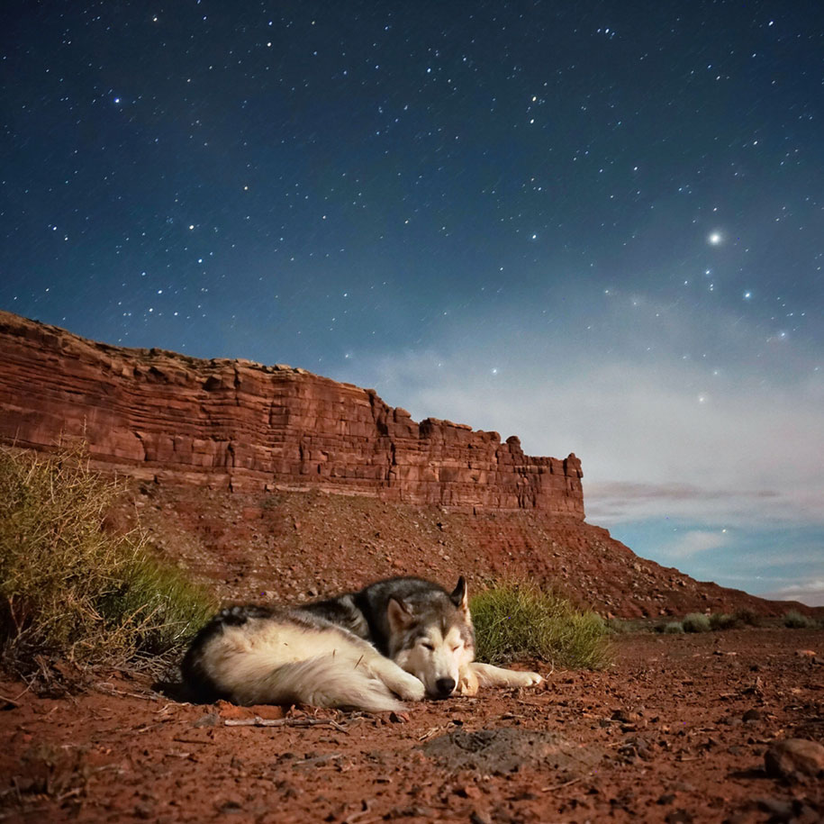 dog-nature-photography-loki-wolfdog-kelly-lund-37